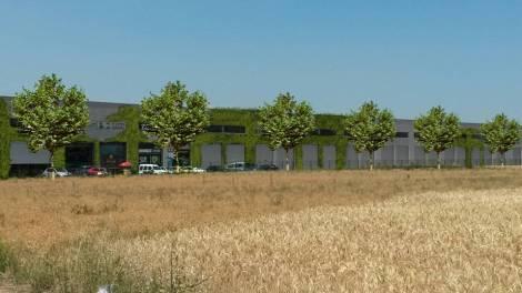 Por ley, todos los polígonos deben tener plantaciones de arbolado. Foto: L.A.