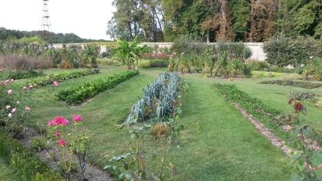 jardin potager . Tours