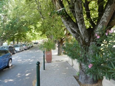 Passseig de Lourmarin (Provença) Foto: L.A.